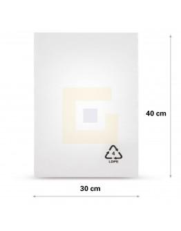 Vlakke zak LDPE, 30x40cm, 50my - 1000x